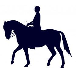Samolepka na auto-jízda na koni 08
