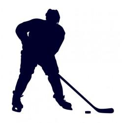Samolepka na auto-hokejista