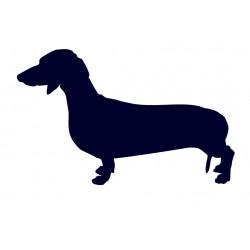 Nálepka na auto- jezevčík- pes v autě