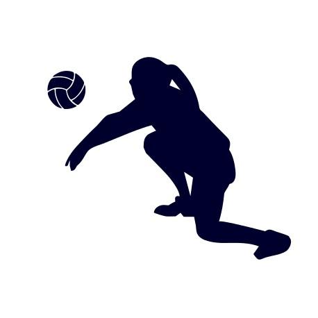 Samolepka na auto- volejbal 03