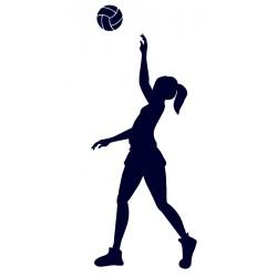 Samolepka na auto- volejbal 04