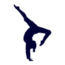 Samolepka na auto- gymnastka