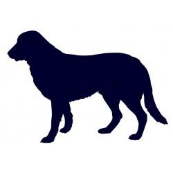 Tuvan Shepherd- Samolepka na auto - pes v autě