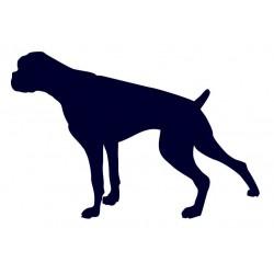Samolepka na auto - pes v autě- Boxer