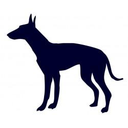 Samolepka na auto - pes v autě- Ibizský podenco