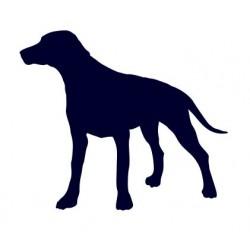 Dalmatin- Samolepka na auto - pes v autě