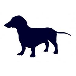 Jezevčík- Samolepka na auto - pes v autě