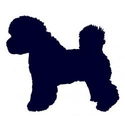 Bišonek- Samolepka na auto - pes v autě