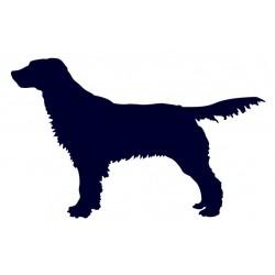 Anglický špringršpaněl- Samolepka na auto - pes v autě