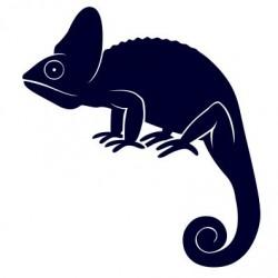 Nálepka na auto - chameleon