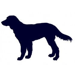 Hovawart- Samolepka na auto - pes v autě