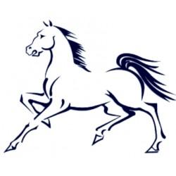 Samolepka na auto- obrys koně