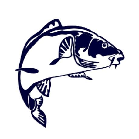 Samolepka na auto- kapr- rybaření