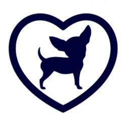 Samolepka na auto-pes čivava v srdci