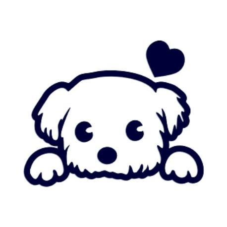 Samolepka na auto- štěně