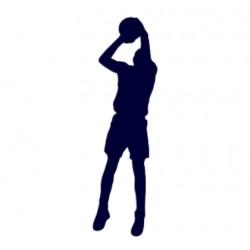 Samolepka na auto- Basketball