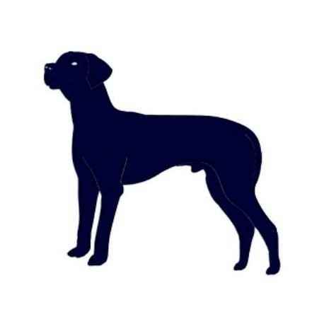Samolepka na auto-pes v autě- pes 17