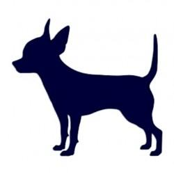 Samolepka na auto-čivava- pes v autě
