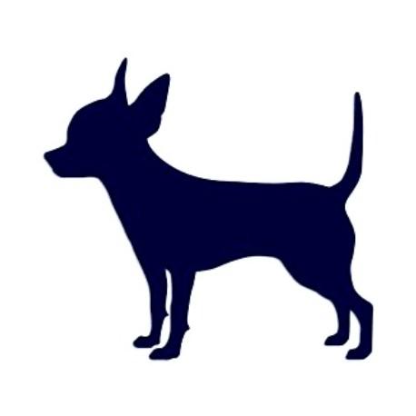 Samolepka na auto-pes v autě- čivava