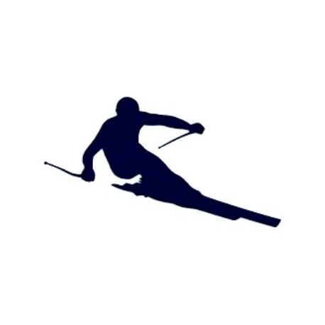 Samolepka na auto-lyžování