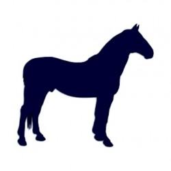 Samolepka na auto- silueta koně 02