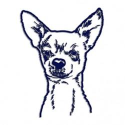 Samolepka na auto - pes v autě - portrét čivavy