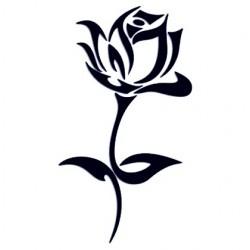 Samolepka na auto - růže 01
