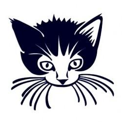 Samolepka na auto - kočka 04