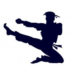 Samolepka na auto s motivem karate 02