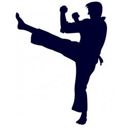 Samolepka na auto s motivem karate 04