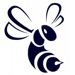 Samolepka včela- nálepka na auto + vlastní text
