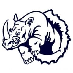 Tuning samolepka na auto- nosorožec