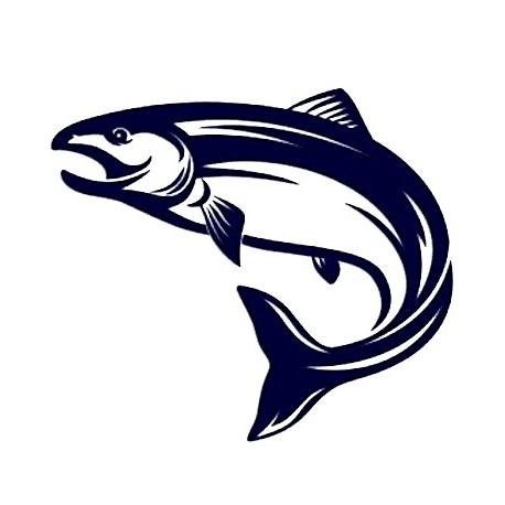 Samolepka na auto - ryba 02 - rybaření
