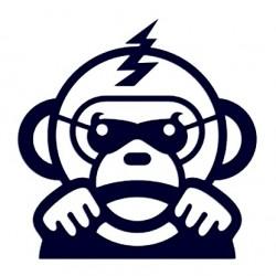 Samolepka na auto - opice