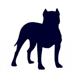 Samolepka na auto - pes v autě - Pitbull 05