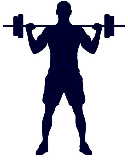 Cvičení, fitness